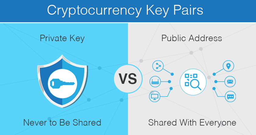 Difference between crypto public keys and private keys